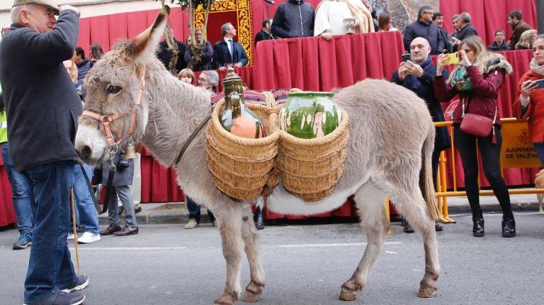 Elpatrón de los animales, San Antonio Abad, bendice las mascotas de los valencianos