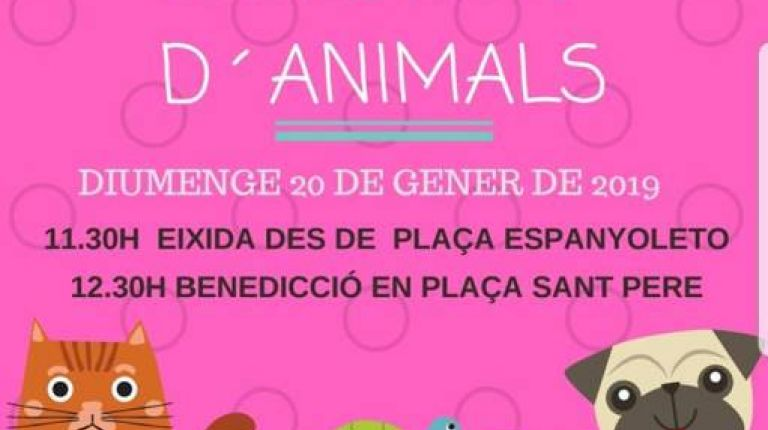 Bendición animales Játiva