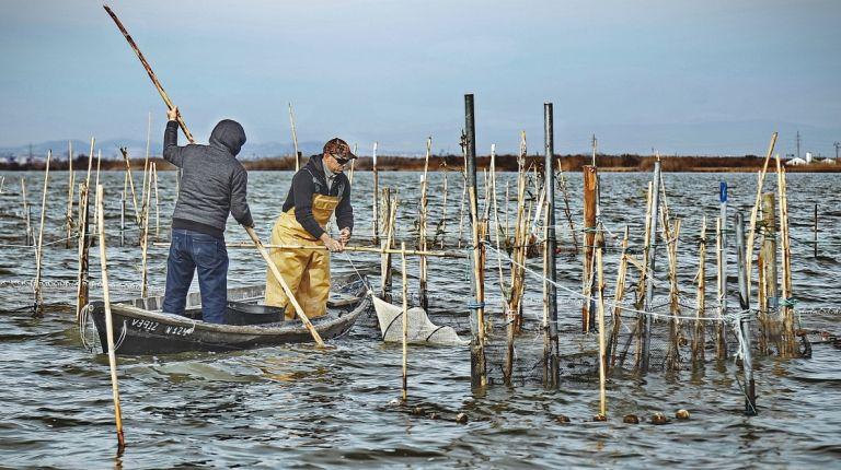 Pescadores de la Bretaña y el mediterráneo francés han participado en la Primera Mostreta de Pesca Artesanal